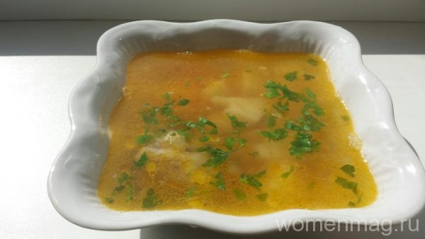 Легкий суп с нагутом