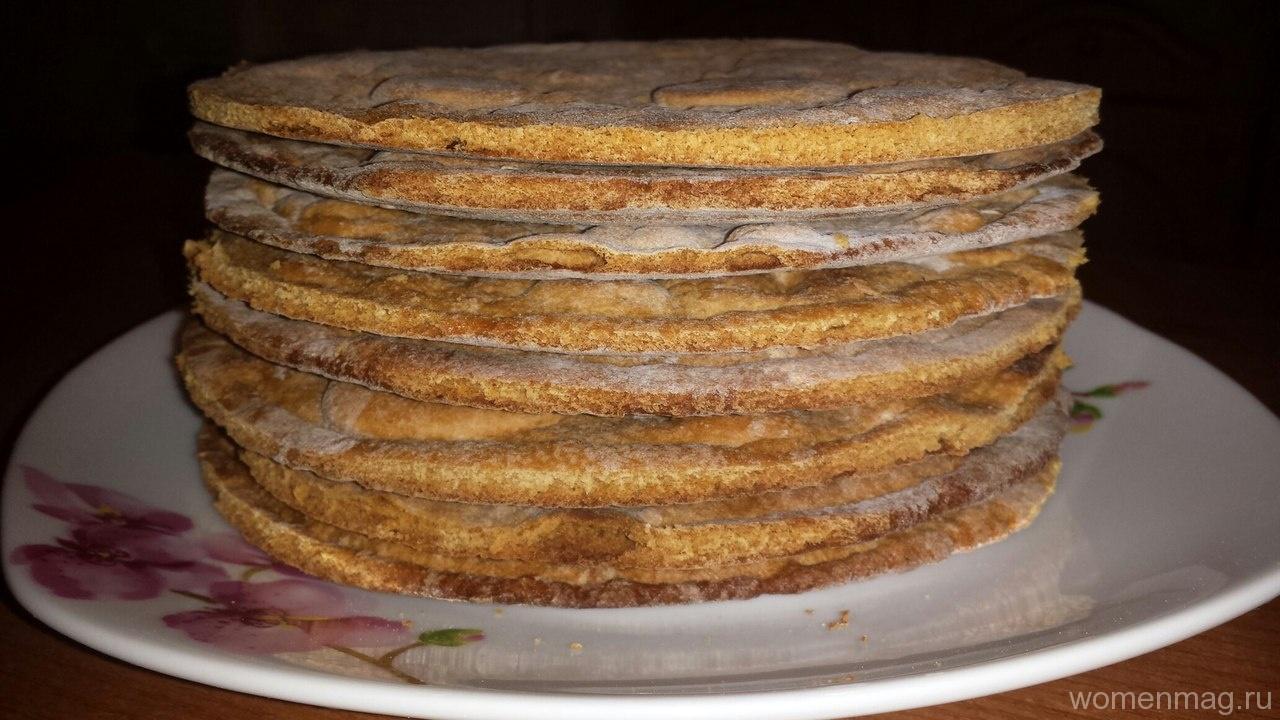Идеальные медовые коржи для торта
