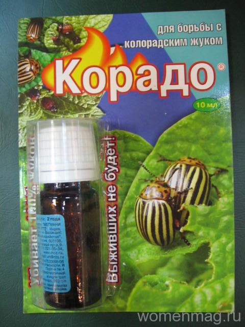 Средство от колорадского жука «Корадо». Отзыв