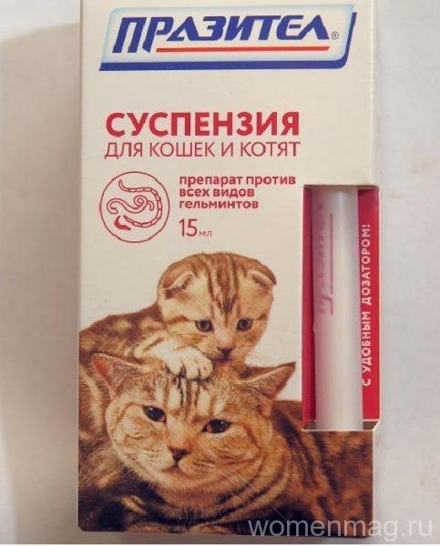 Суспензия для кошек и котят Празител от глистов