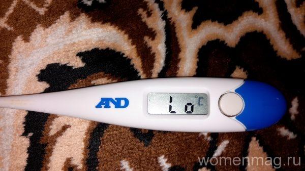 Термометр электронный AND DT-510