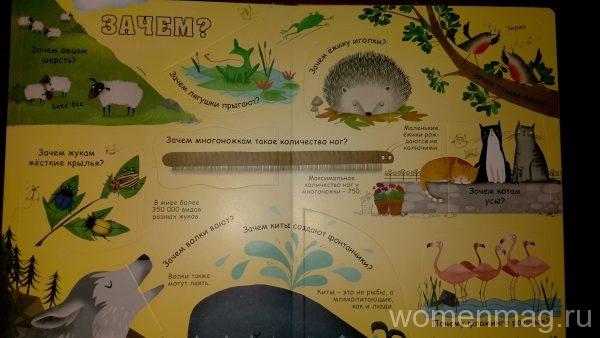 Отзыв на книгу Вопросы и ответы о животных. 60 секретных створок издательства Робинс