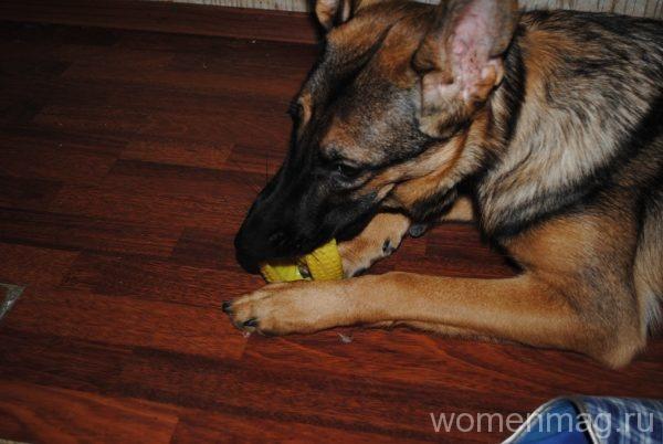 Игрушка для собак V.I.Pet Массажный мяч. Регби