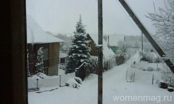 зима на даче