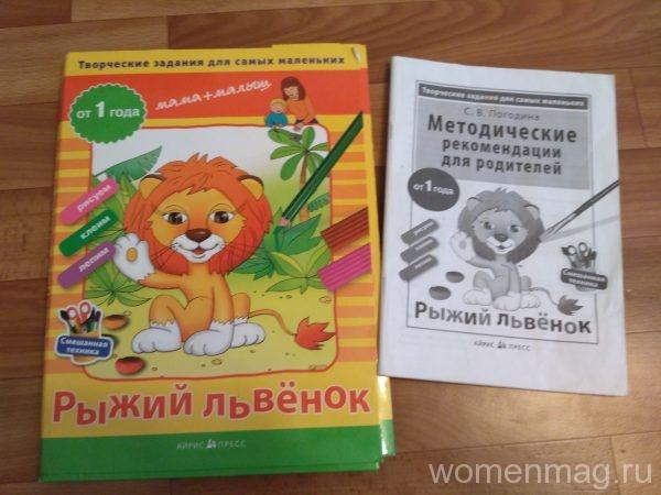 Творческие задания Рыжий львенок