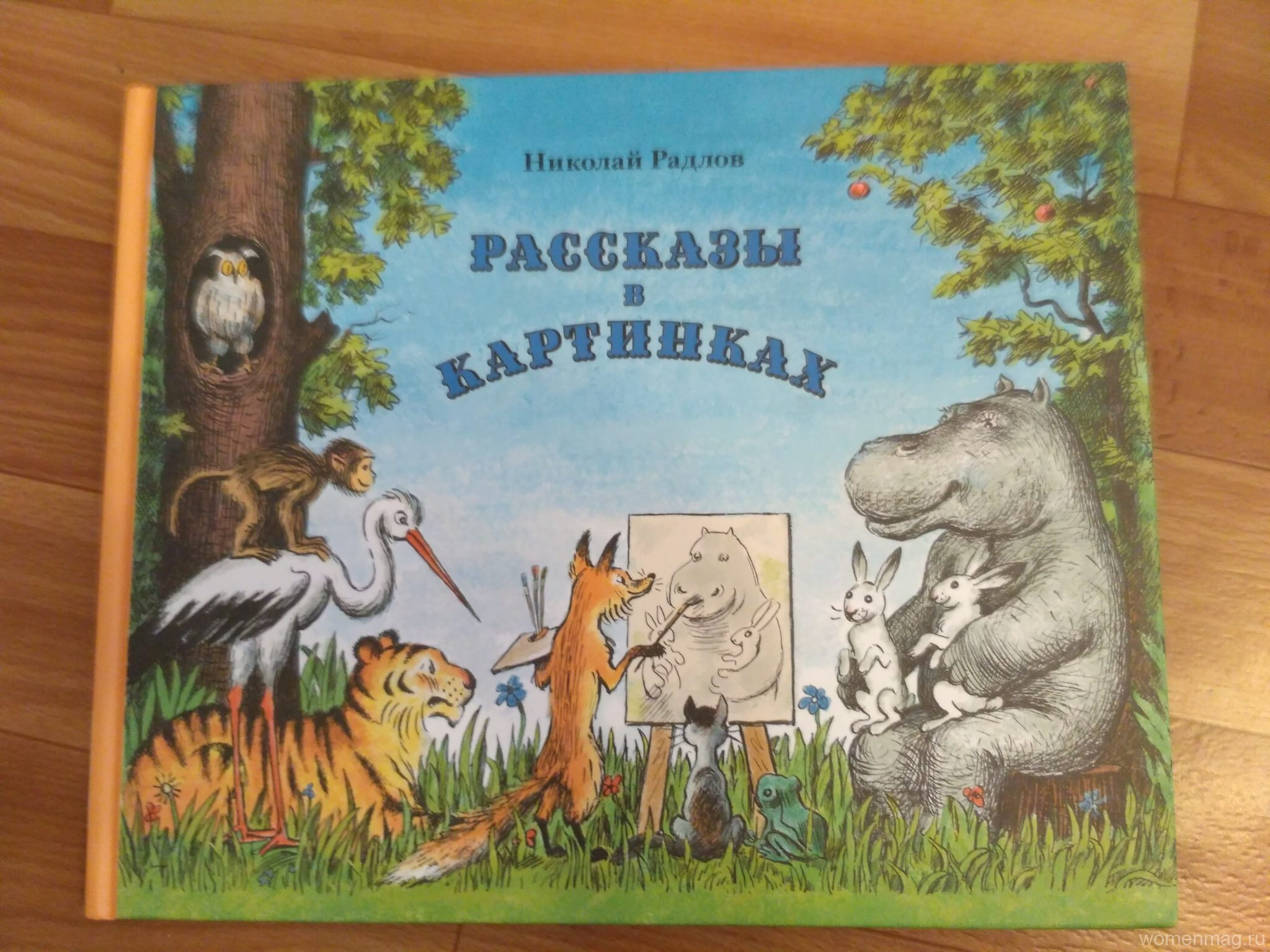 Детская книга «Рассказы в картинках»