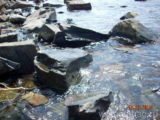 Крабики на камне