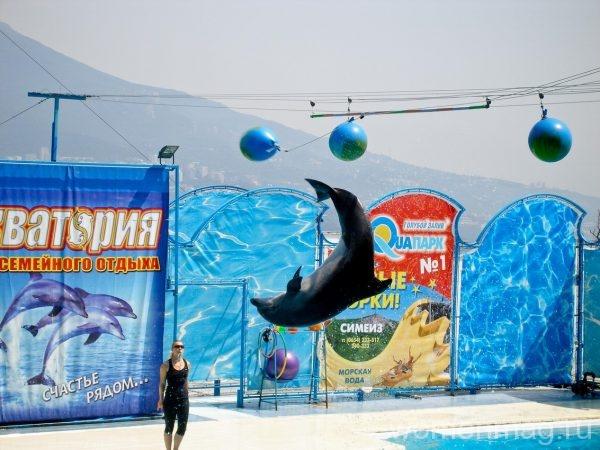 Театр морских животных Акватория в Ялте