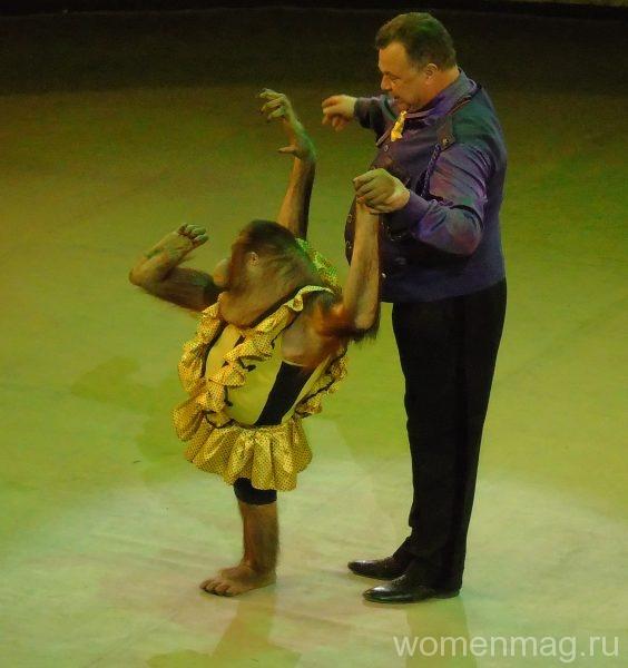 Гастроли «Циркъ № 1» в Хабаровске