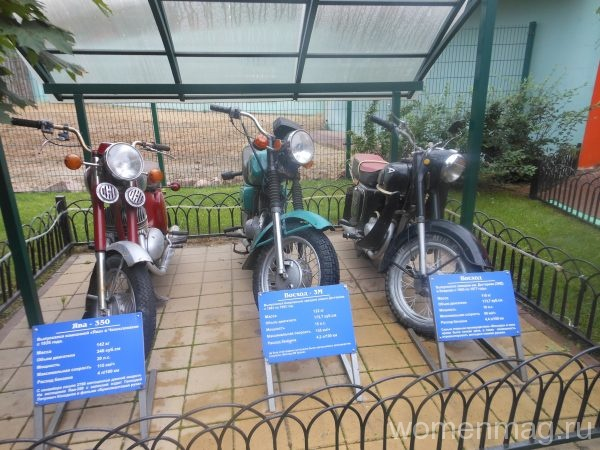 Нижегородский зоопарк Лимпопо