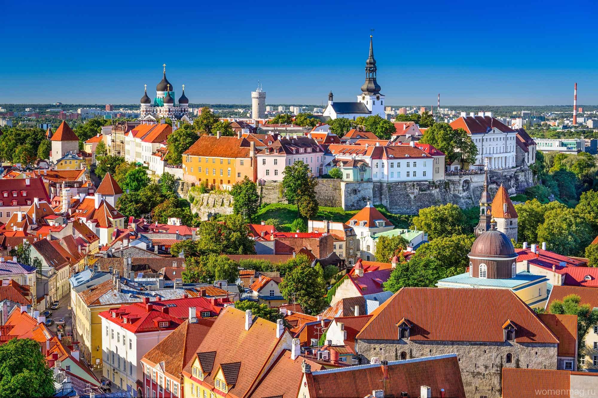 Отдых в Эстонии — Таллин